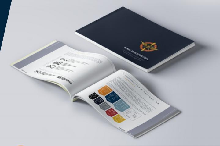 Manual de Identidad visual 2020